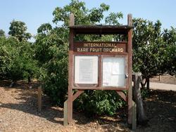 International Rare Fruit Orchard sign