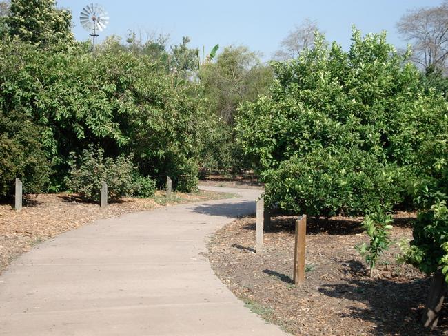 Pathway through the international fruit orchard