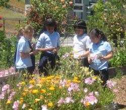 Children in flower garden