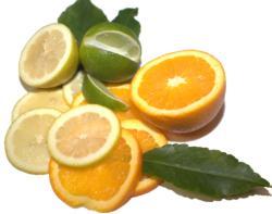 Citrus mix Jerry McClory